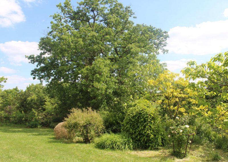 Propriété de campagne avec parc, lac et bois