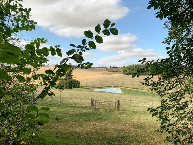 maison avec étang à vendre dans le Gers
