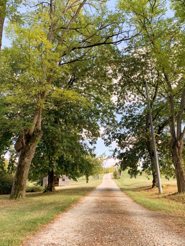 acheter une maison de campagne près de Lectoure
